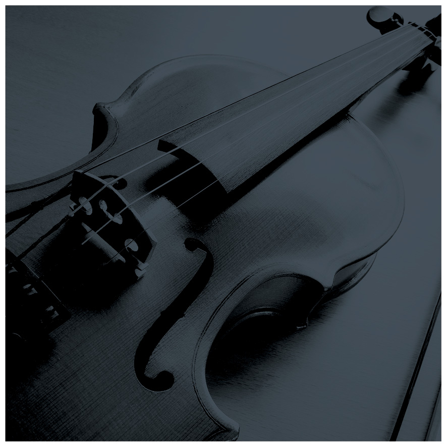 """I played the violin on Harry Connick Jr's album """"Every Man Should Know"""""""